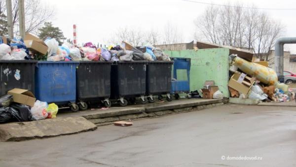 Город-помойка. Переполненные мусорные баки в Домодедово