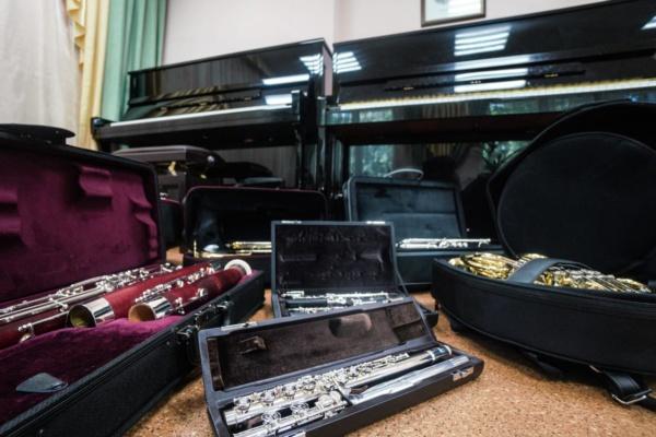 Новые музыкальные инструменты для домодедовских учеников школ искусств