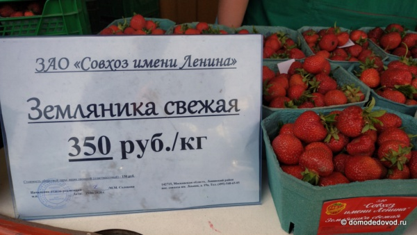 В Домодедово началась продажа клубники совхоза имени Ленина