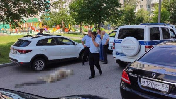 Полиция и труп собаки