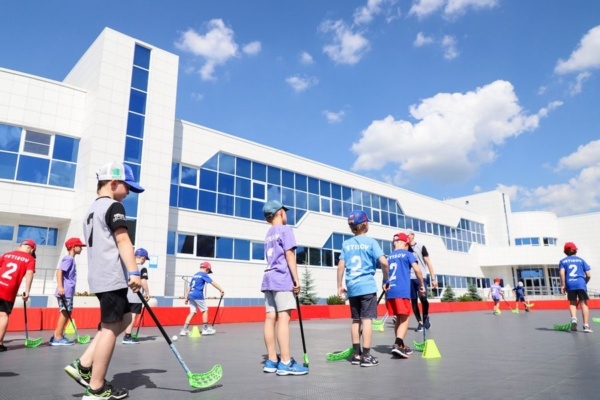 Спорт в Домодедово