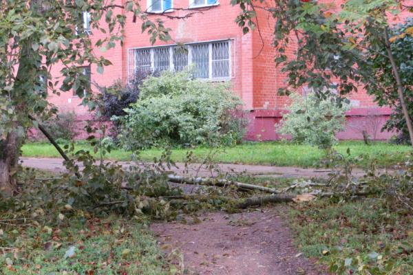 После бури на Корнеева