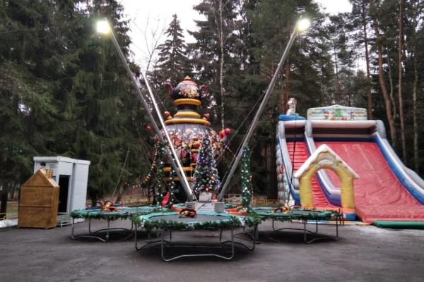 """Зима со вкусом"" в парке ""Ёлочки"""