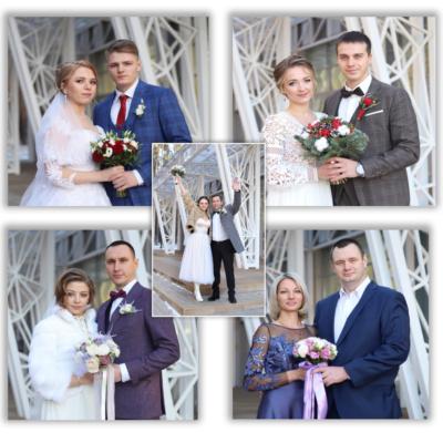1500-я пара молодоженов зарегистрирована в Домодедово