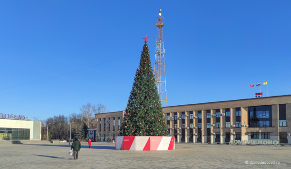 Новогодние ёлки в Домодедово