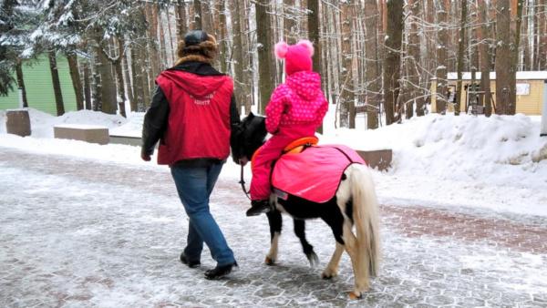 Пони в парке «Ёлочки»