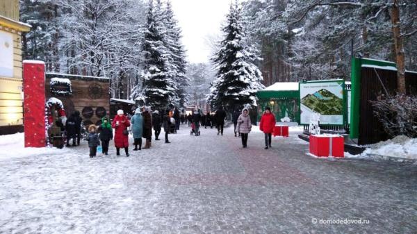 Зима в парке «Ёлочки»