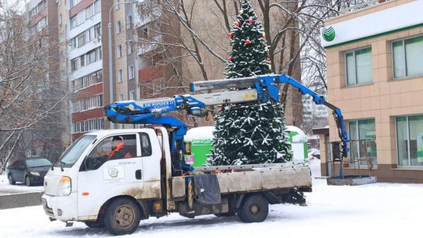 В Домодедово убирают ёлки