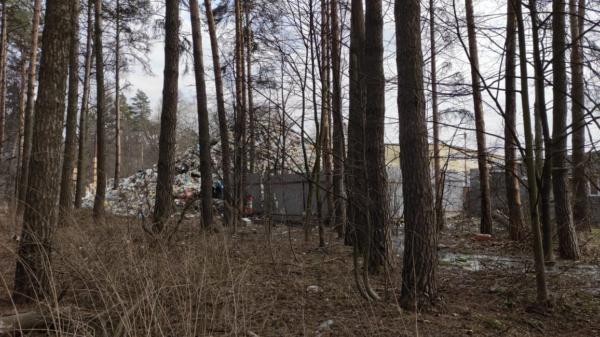 Свалка в Ленинском районе