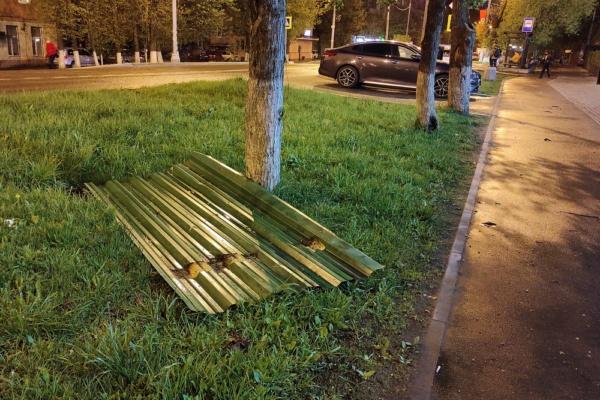 Ветер в Домодедово валит деревья и срывает ограждения