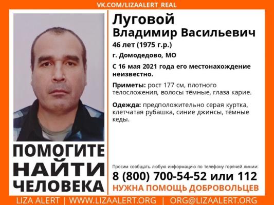 Пропал Луговой Владимир Васильевич, 46 лет, г. Домодедово