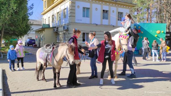 Парк «Ёлочки» в Домодедово