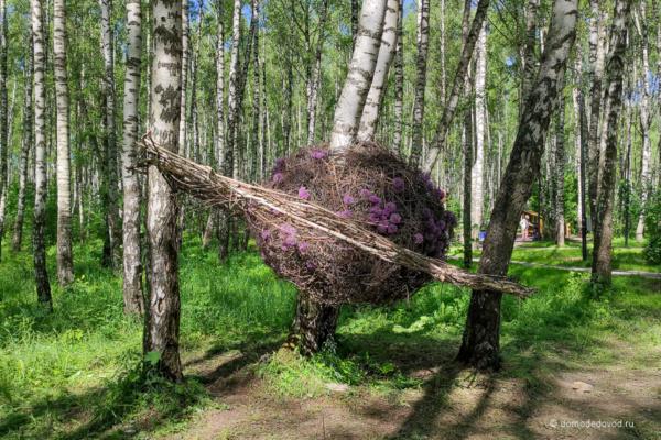 Арт-объекты в парке «Городской лес»