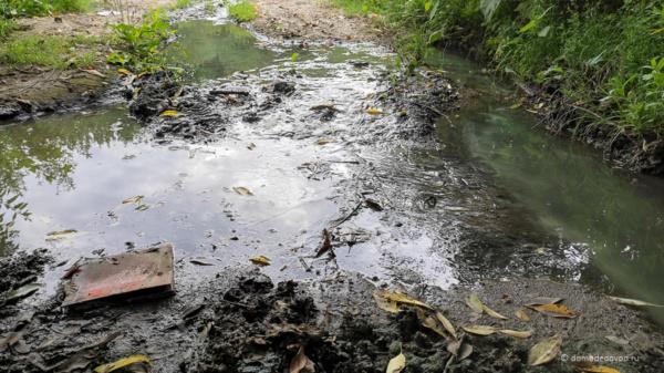 Показуха. Домодедовская канализация продолжает течь в Рожайку