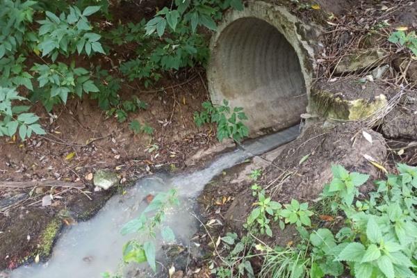 Слив канализации в Константиново
